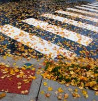 Health and Safety Tips for the First Day of Fall